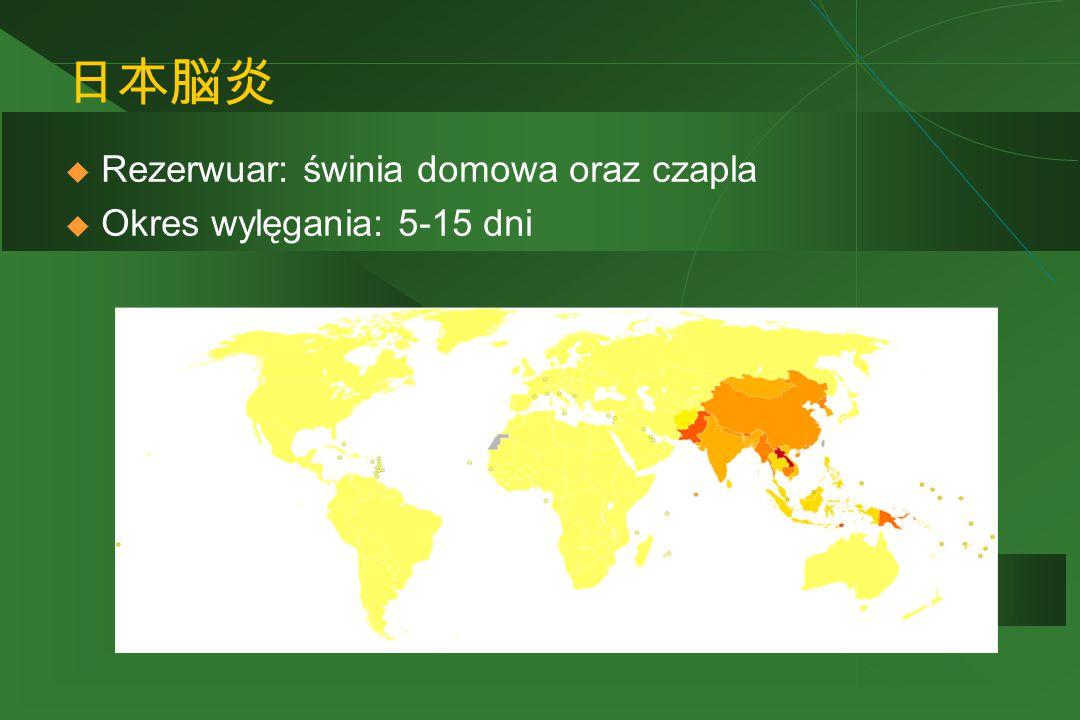 日本脳炎 Rezerwuar: świnia domowa oraz czapla Okres wylęgania: 5-15 dni