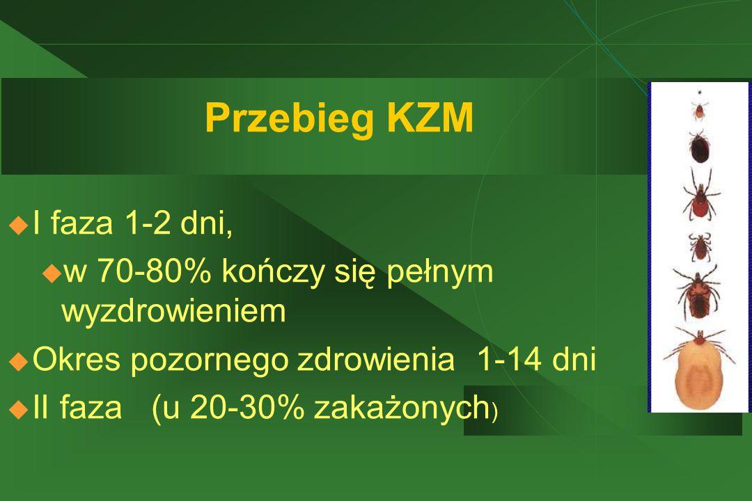 Przebieg KZM I faza 1-2 dni, w 70-80% kończy się pełnym wyzdrowieniem