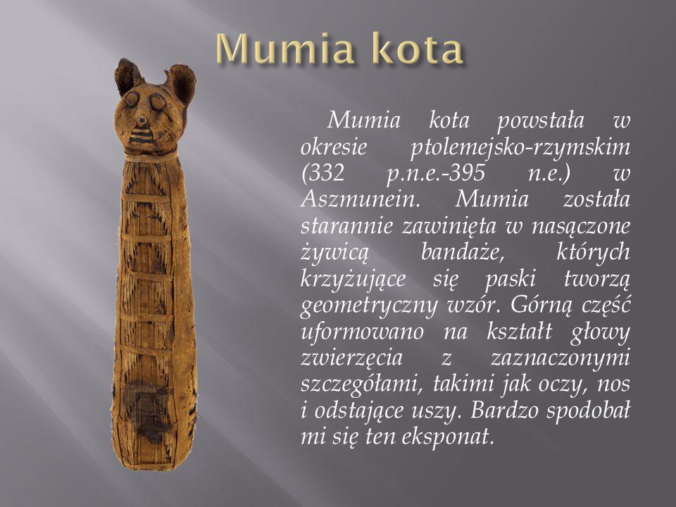 Mumia kota