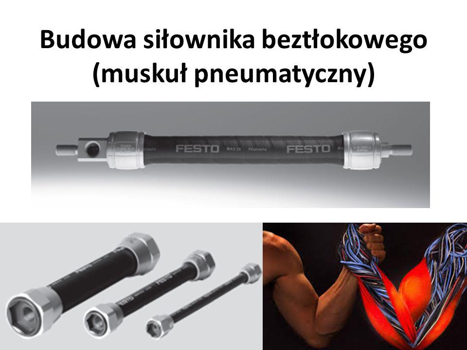 Budowa siłownika beztłokowego (muskuł pneumatyczny)