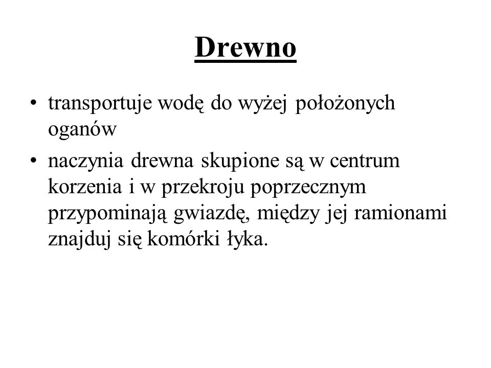 Drewno transportuje wodę do wyżej położonych oganów