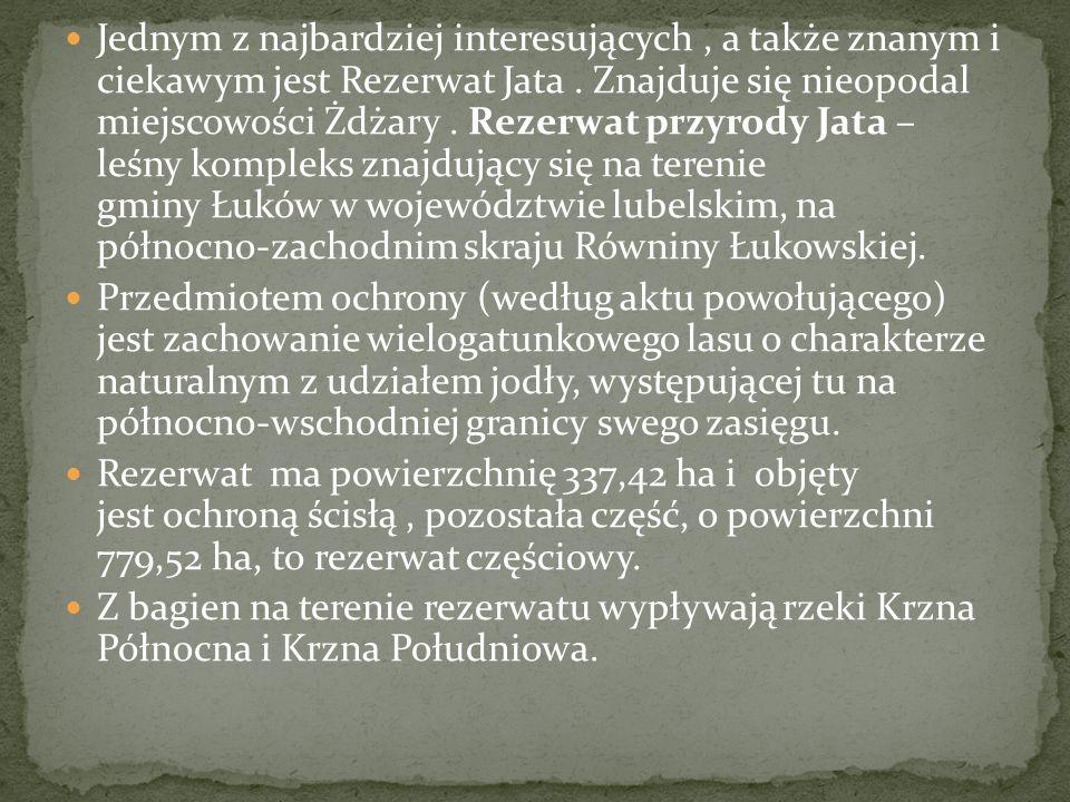 Jednym z najbardziej interesujących , a także znanym i ciekawym jest Rezerwat Jata . Znajduje się nieopodal miejscowości Żdżary . Rezerwat przyrody Jata – leśny kompleks znajdujący się na terenie gminy Łuków w województwie lubelskim, na północno-zachodnim skraju Równiny Łukowskiej.