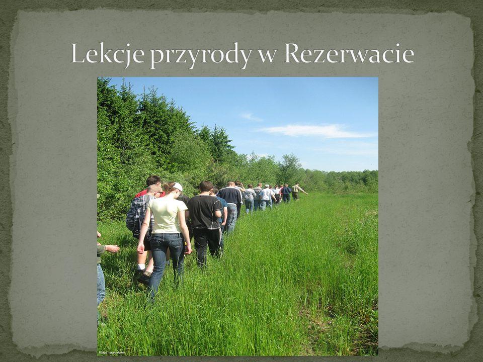 Lekcje przyrody w Rezerwacie