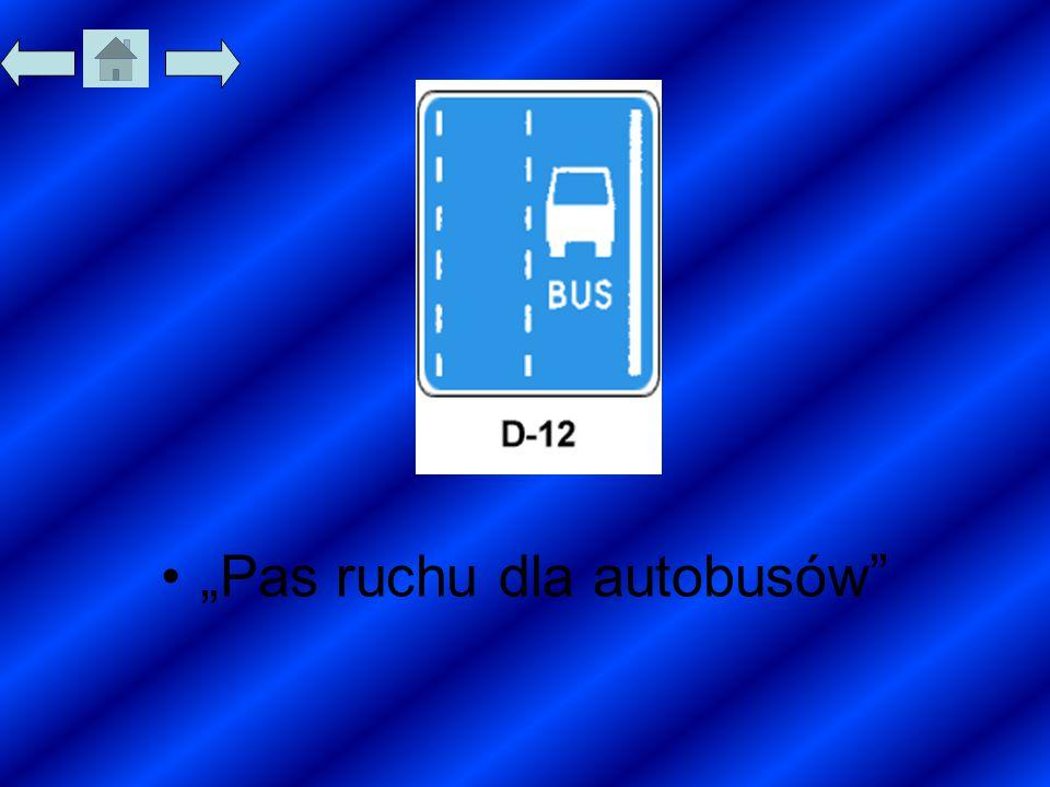 """""""Pas ruchu dla autobusów"""