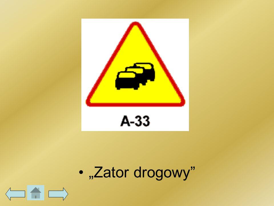 """""""Zator drogowy"""