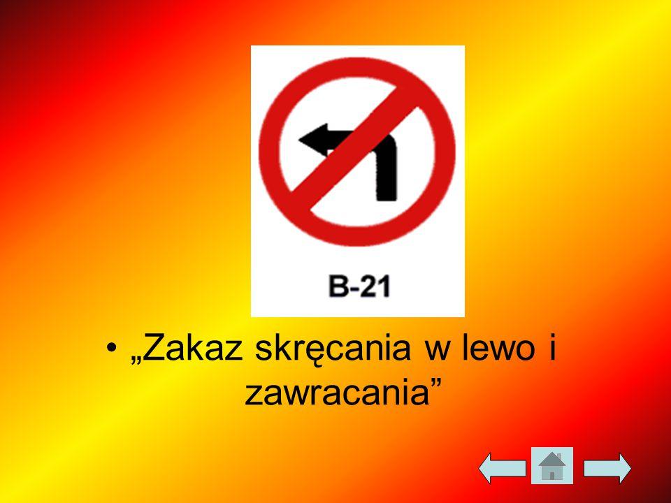 """""""Zakaz skręcania w lewo i zawracania"""