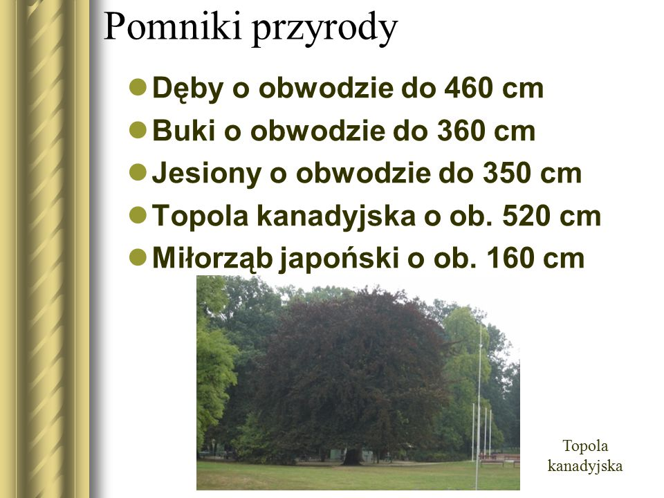 Pomniki przyrody Dęby o obwodzie do 460 cm Buki o obwodzie do 360 cm