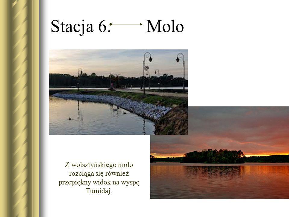 Stacja 6. Molo Z wolsztyńskiego molo rozciąga się również przepiękny widok na wyspę Tumidaj.