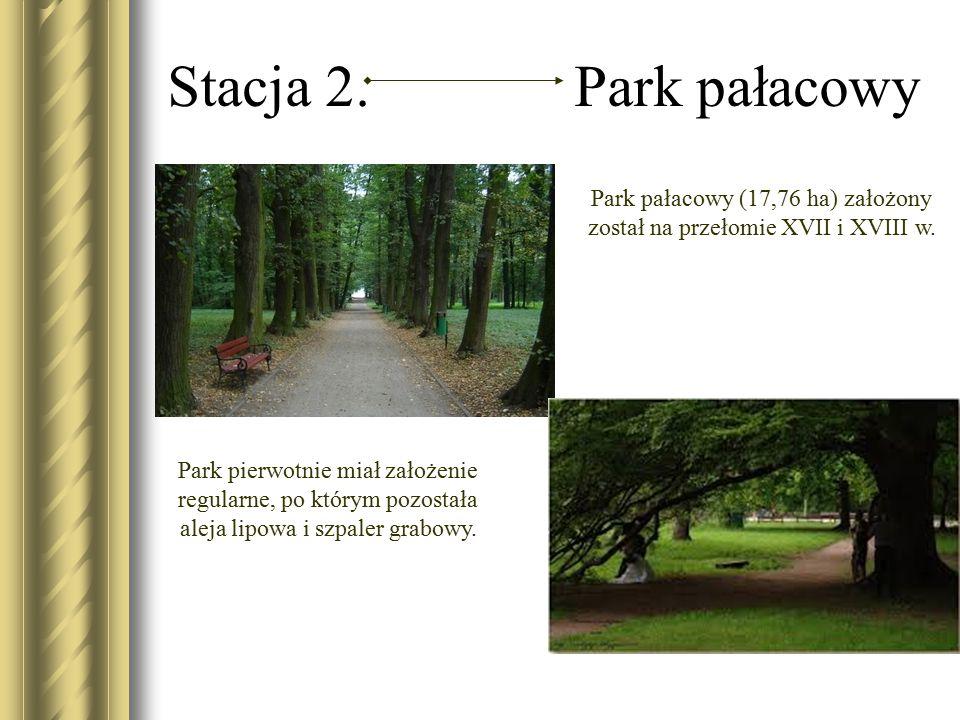 Park pałacowy (17,76 ha) założony został na przełomie XVII i XVIII w.
