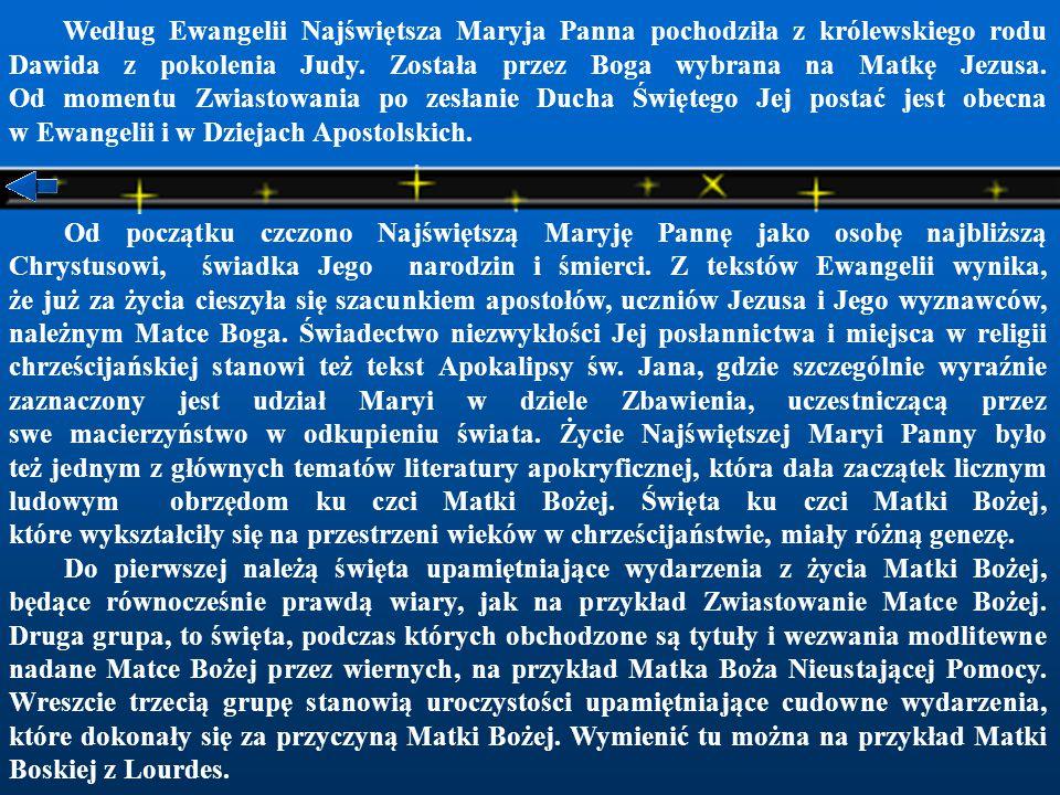 Według Ewangelii Najświętsza Maryja Panna pochodziła z królewskiego rodu Dawida z pokolenia Judy. Została przez Boga wybrana na Matkę Jezusa. Od momentu Zwiastowania po zesłanie Ducha Świętego Jej postać jest obecna w Ewangelii i w Dziejach Apostolskich.