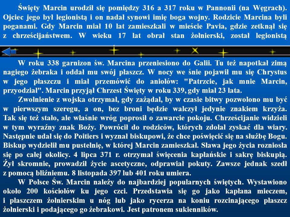 Święty Marcin urodził się pomiędzy 316 a 317 roku w Pannonii (na Węgrach). Ojciec jego był legionistą i on nadał synowi imię boga wojny. Rodzicie Marcina byli poganami. Gdy Marcin miał 10 lat zamieszkali w mieście Pavia, gdzie zetknął się z chrześcijaństwem. W wieku 17 lat obrał stan żołnierski, został legionistą