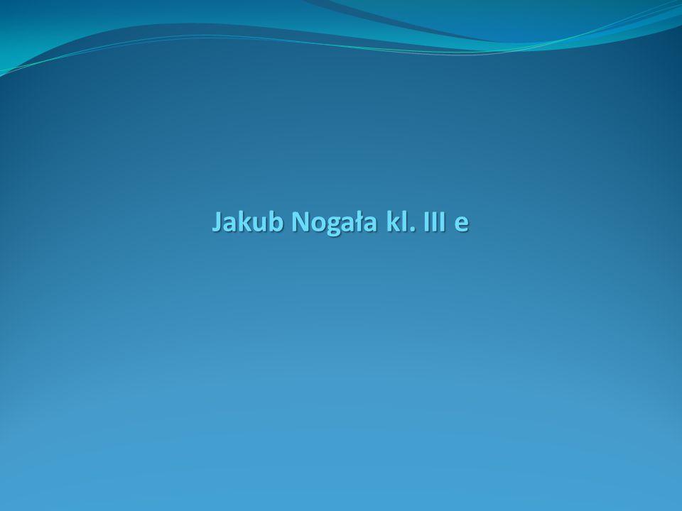 Jakub Nogała kl. III e