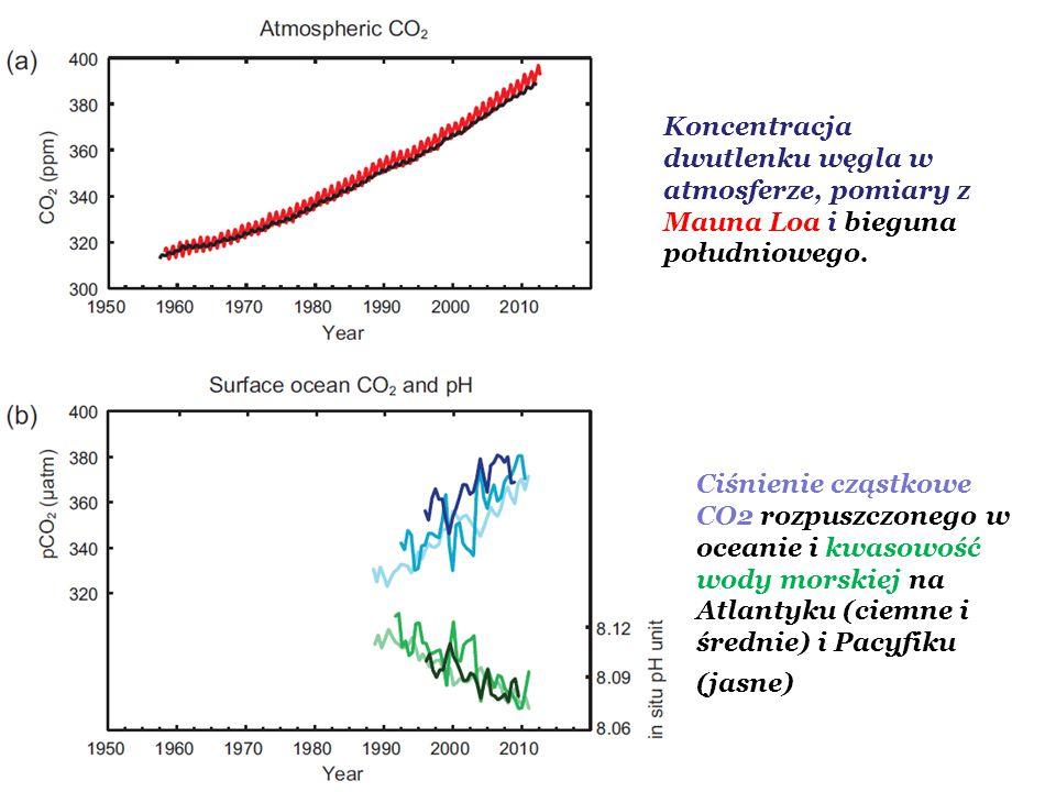 Koncentracja dwutlenku węgla w atmosferze, pomiary z Mauna Loa i bieguna południowego.
