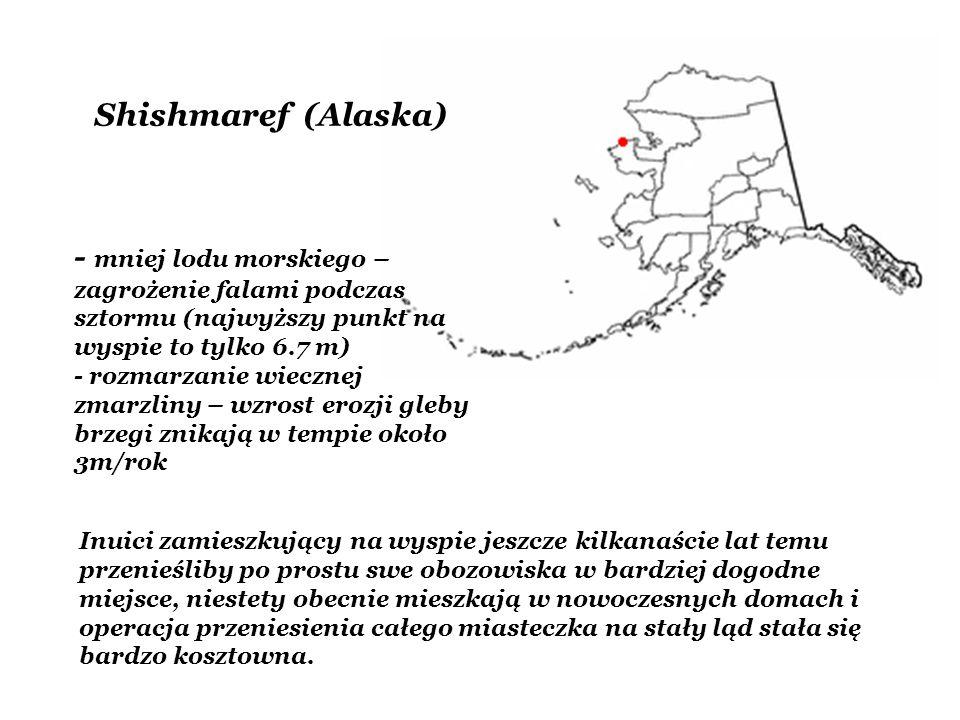 Shishmaref (Alaska) - mniej lodu morskiego – zagrożenie falami podczas sztormu (najwyższy punkt na wyspie to tylko 6.7 m)