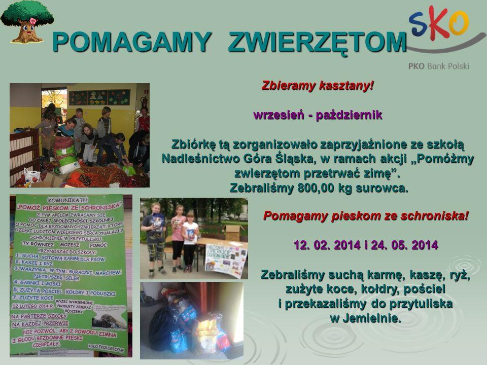 POMAGAMY ZWIERZĘTOM Zbieramy kasztany! wrzesień - październik