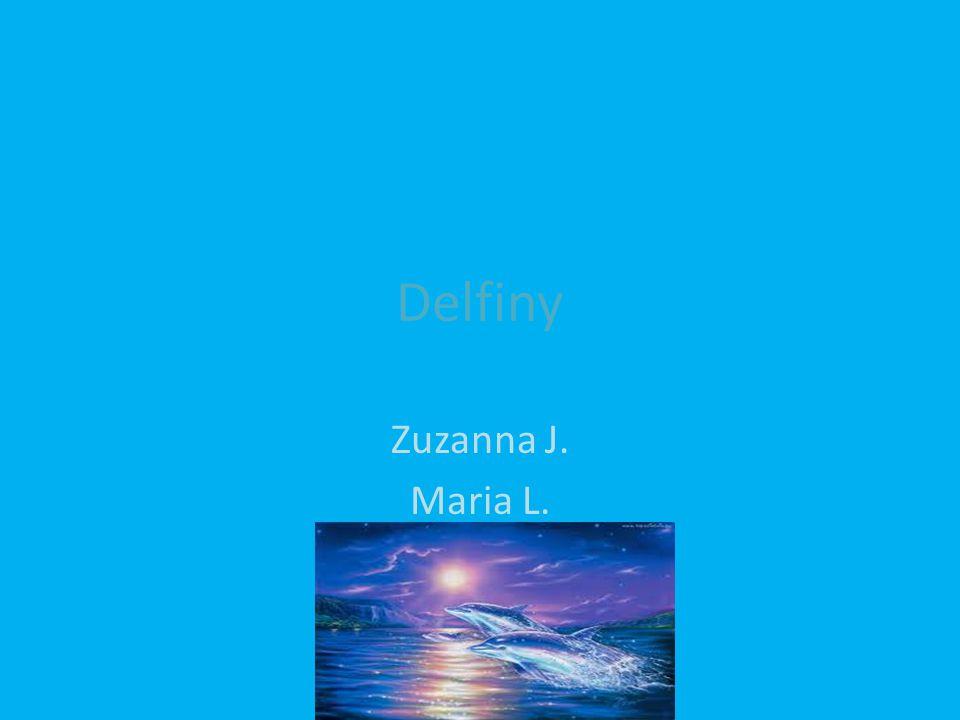 Delfiny Zuzanna J. Maria L.