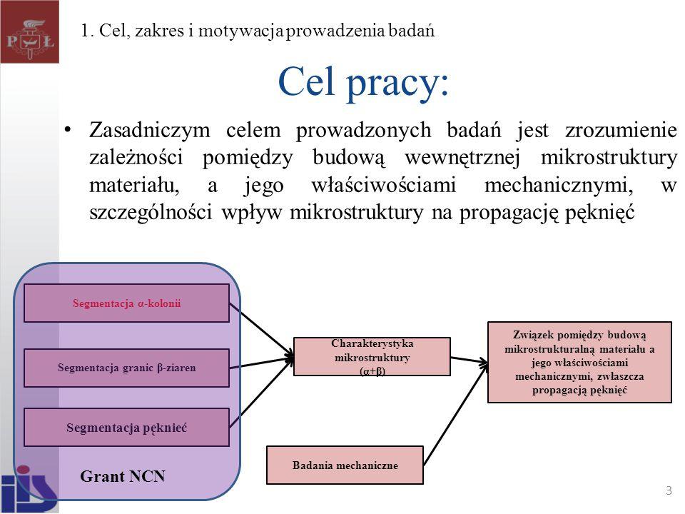 1. Cel, zakres i motywacja prowadzenia badań
