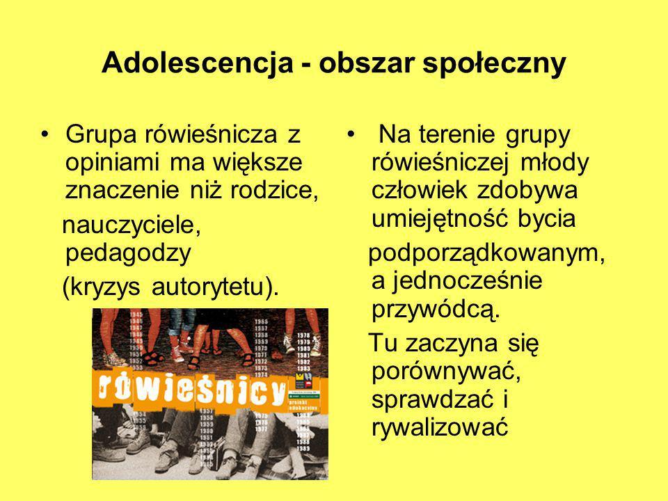 Adolescencja - obszar społeczny
