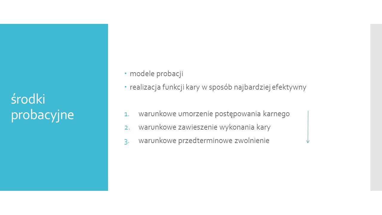 środki probacyjne modele probacji
