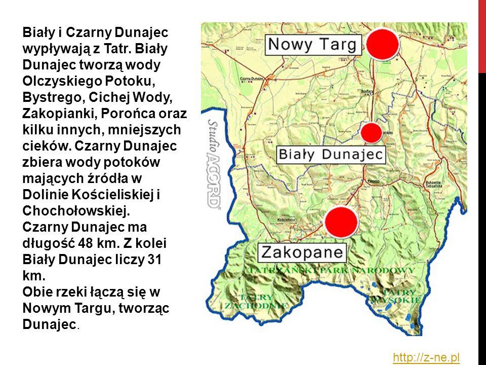 Czarny Dunajec ma długość 48 km. Z kolei Biały Dunajec liczy 31 km.