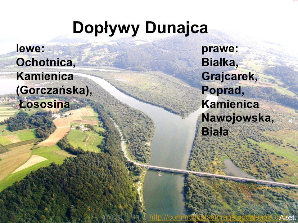 Dopływy Dunajca lewe: Ochotnica, Kamienica (Gorczańska), Łososina.