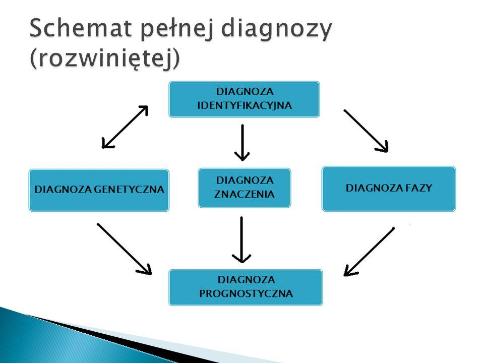 Schemat pełnej diagnozy (rozwiniętej)