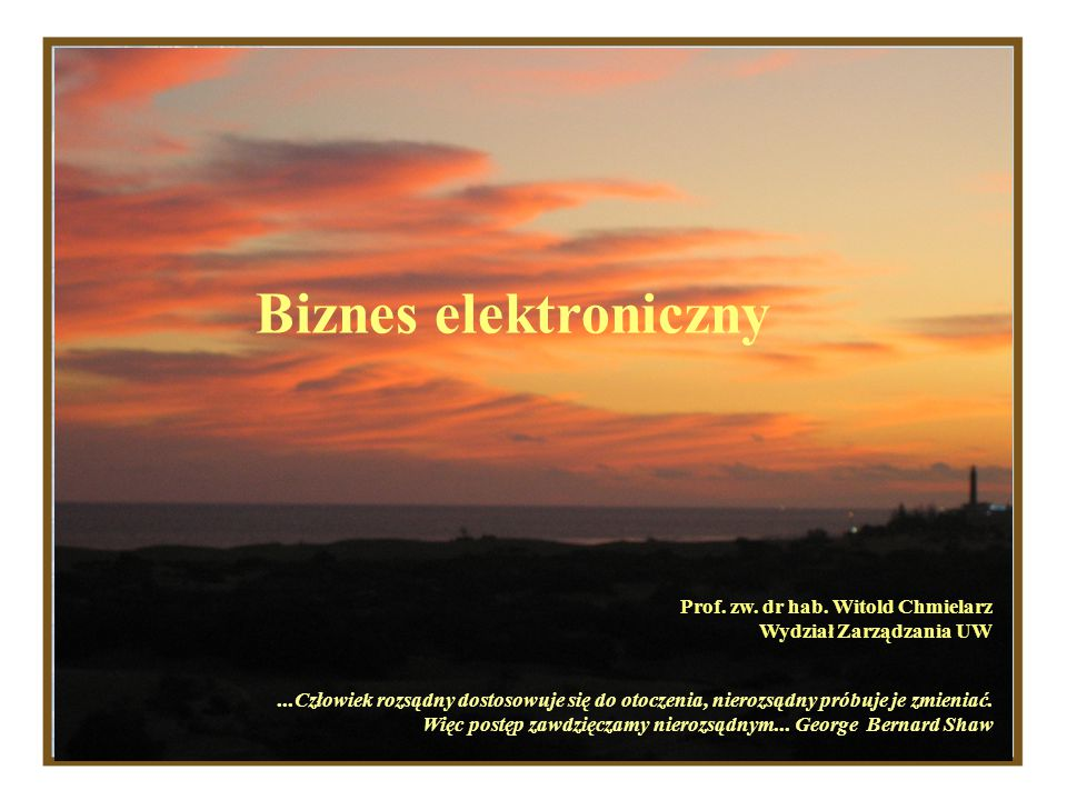 Biznes elektroniczny Prof. zw. dr hab. Witold Chmielarz