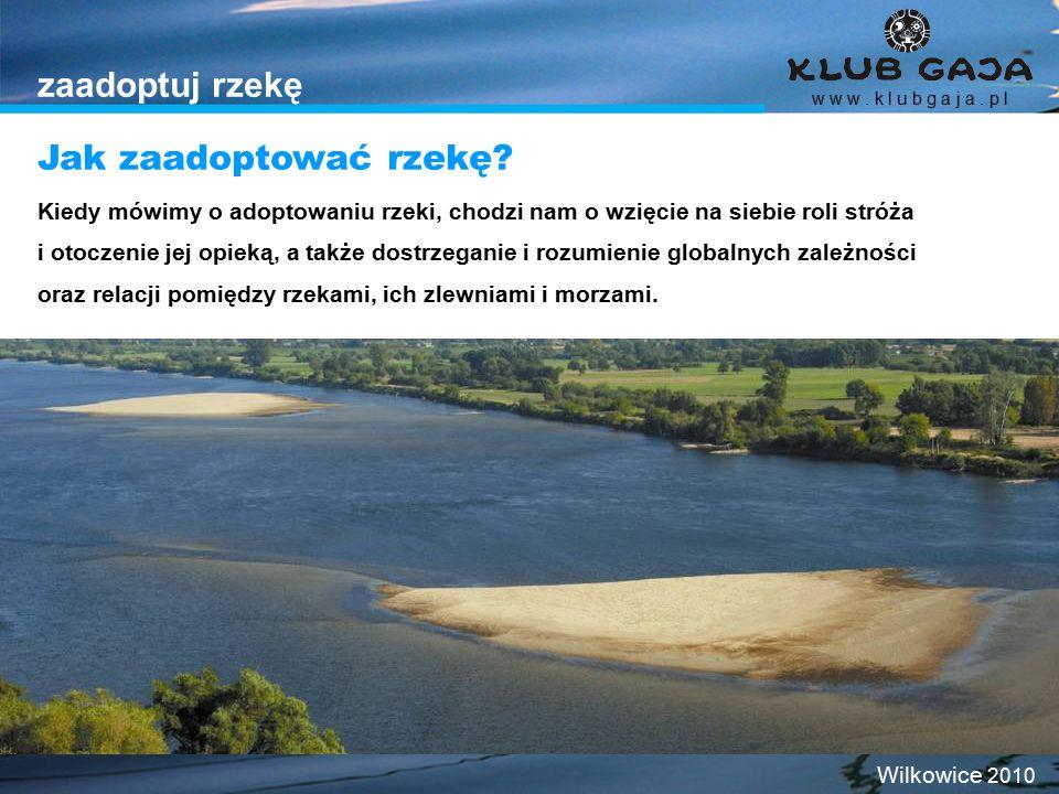 zaadoptuj rzekę Jak zaadoptować rzekę