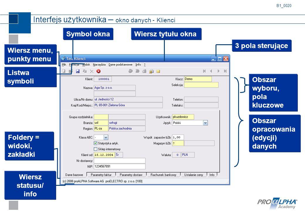 Interfejs użytkownika – okno danych - Klienci