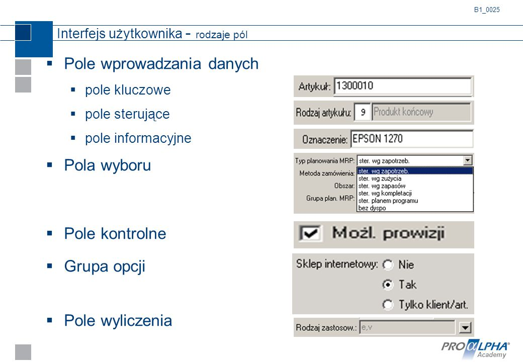 Interfejs użytkownika - rodzaje pól