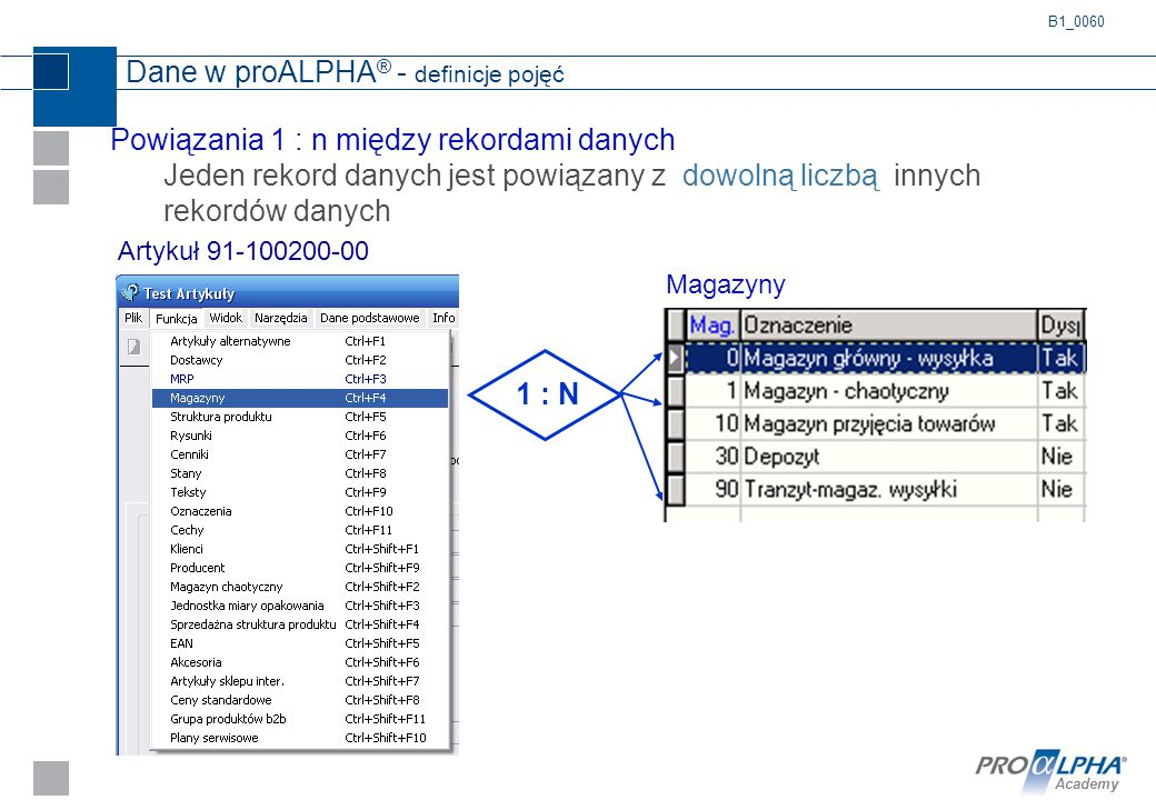 Dane w proALPHA® - definicje pojęć