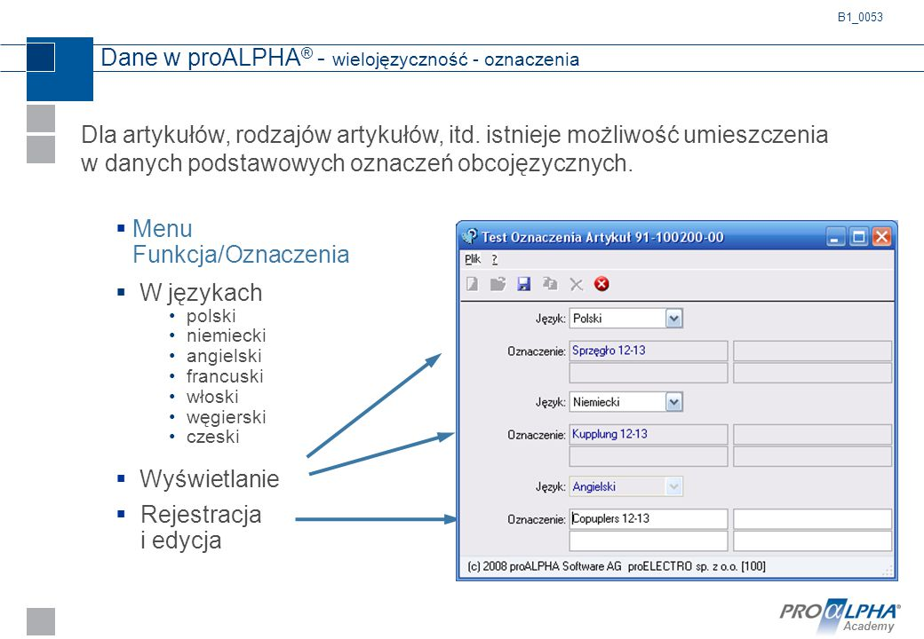 Dane w proALPHA® - wielojęzyczność - oznaczenia