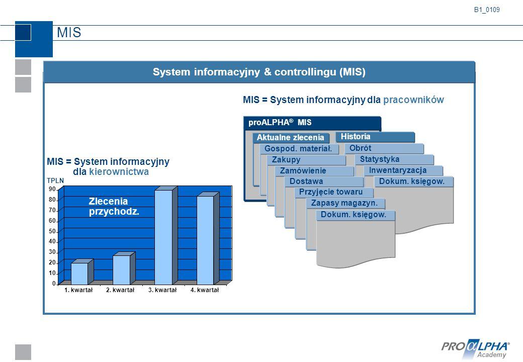 System informacyjny & controllingu (MIS)