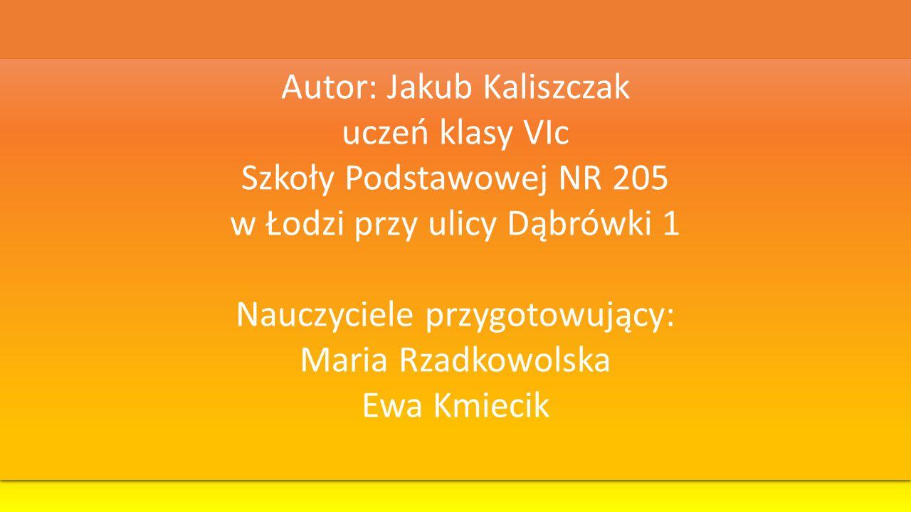Autor: Jakub Kaliszczak uczeń klasy VIc Szkoły Podstawowej NR 205