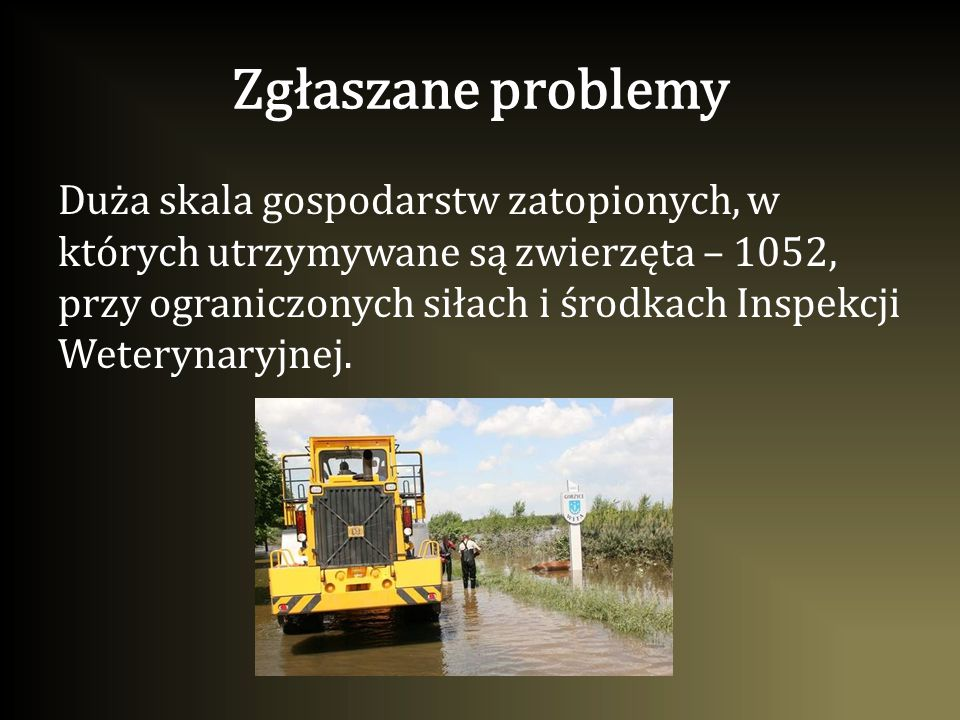 Zgłaszane problemy