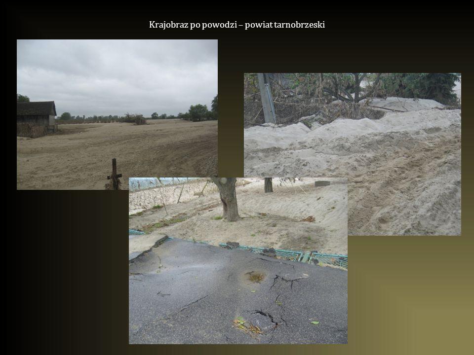 Krajobraz po powodzi – powiat tarnobrzeski