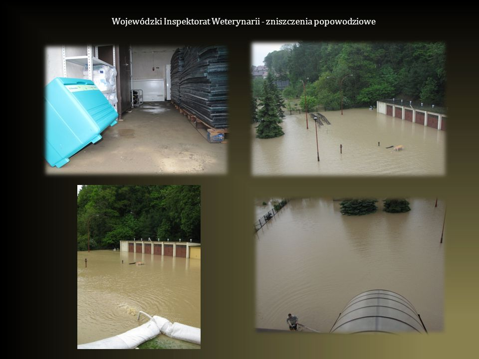 Wojewódzki Inspektorat Weterynarii - zniszczenia popowodziowe