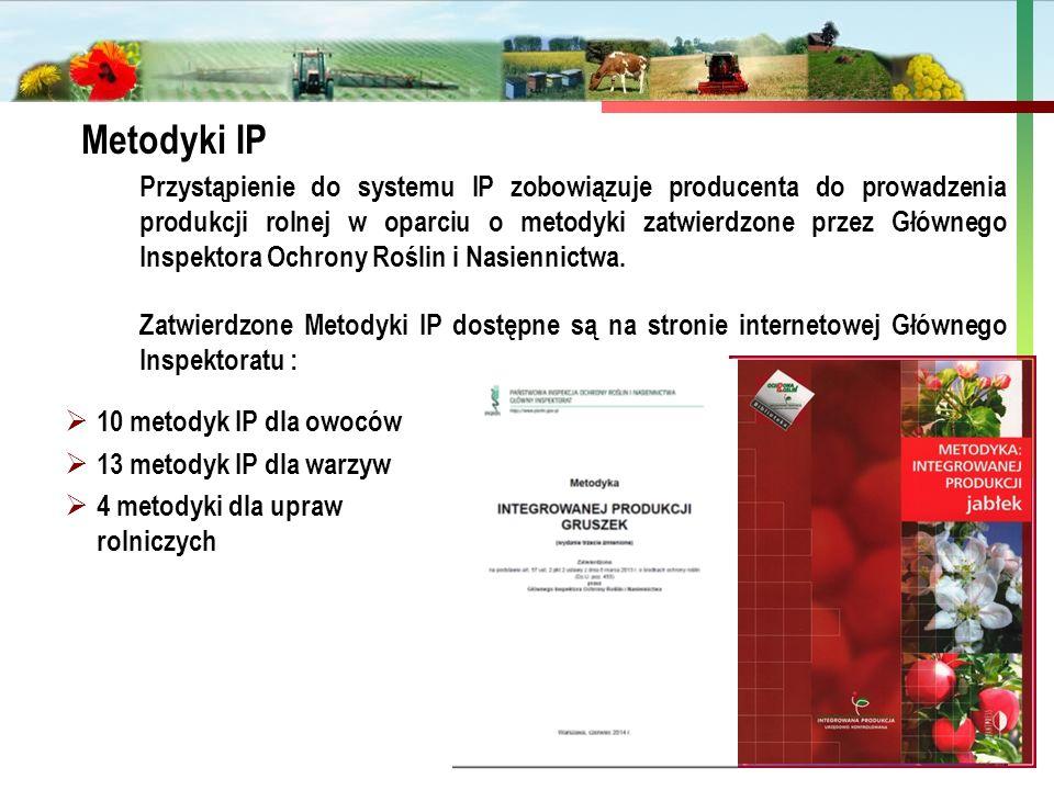 Metodyki IP