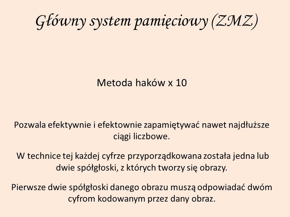 Główny system pamięciowy (ZMZ)