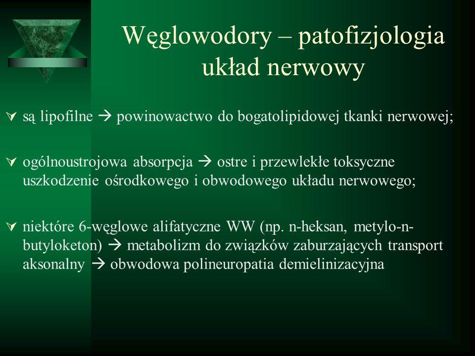 Węglowodory – patofizjologia układ nerwowy