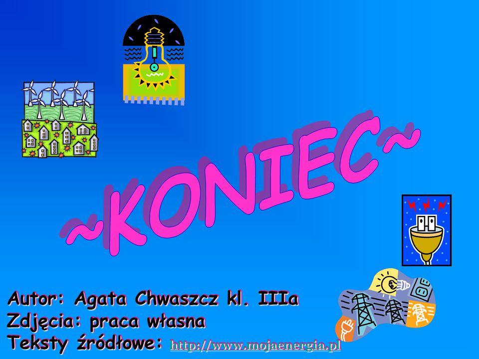 ~KONIEC~ Autor: Agata Chwaszcz kl. IIIa Zdjęcia: praca własna