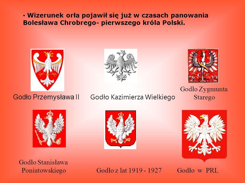 Godło Kazimierza Wielkiego