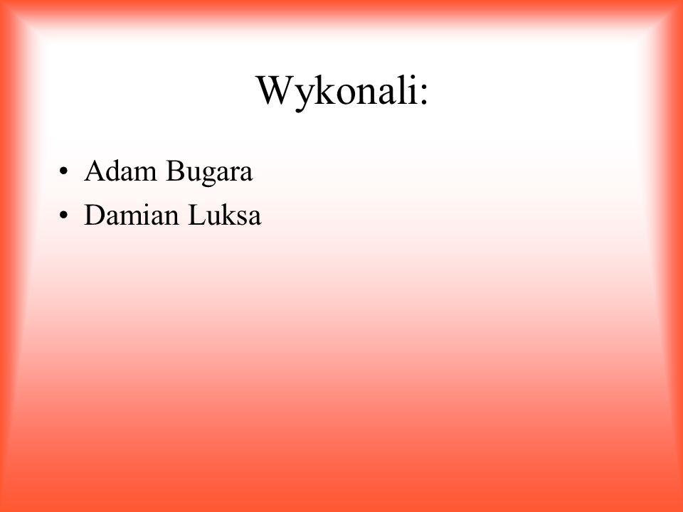 Wykonali: Adam Bugara Damian Luksa