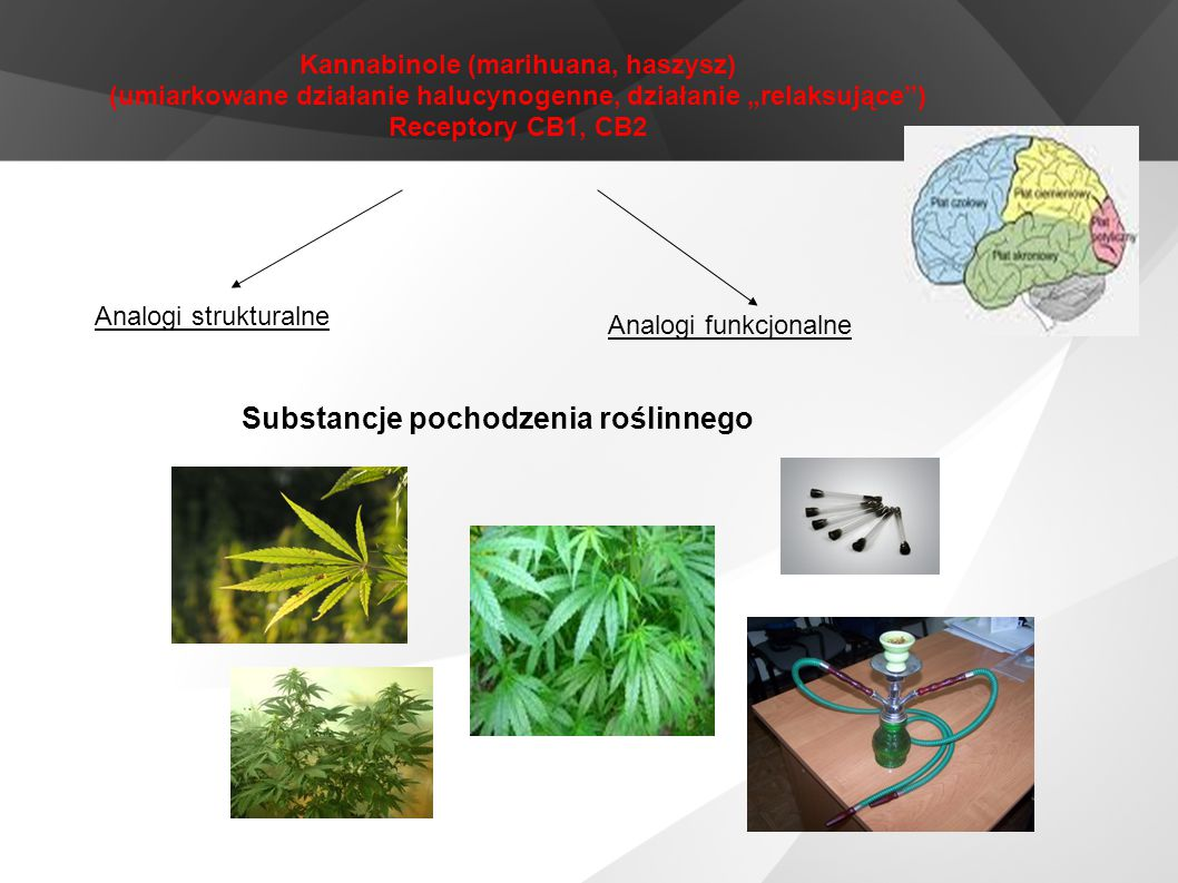Substancje pochodzenia roślinnego