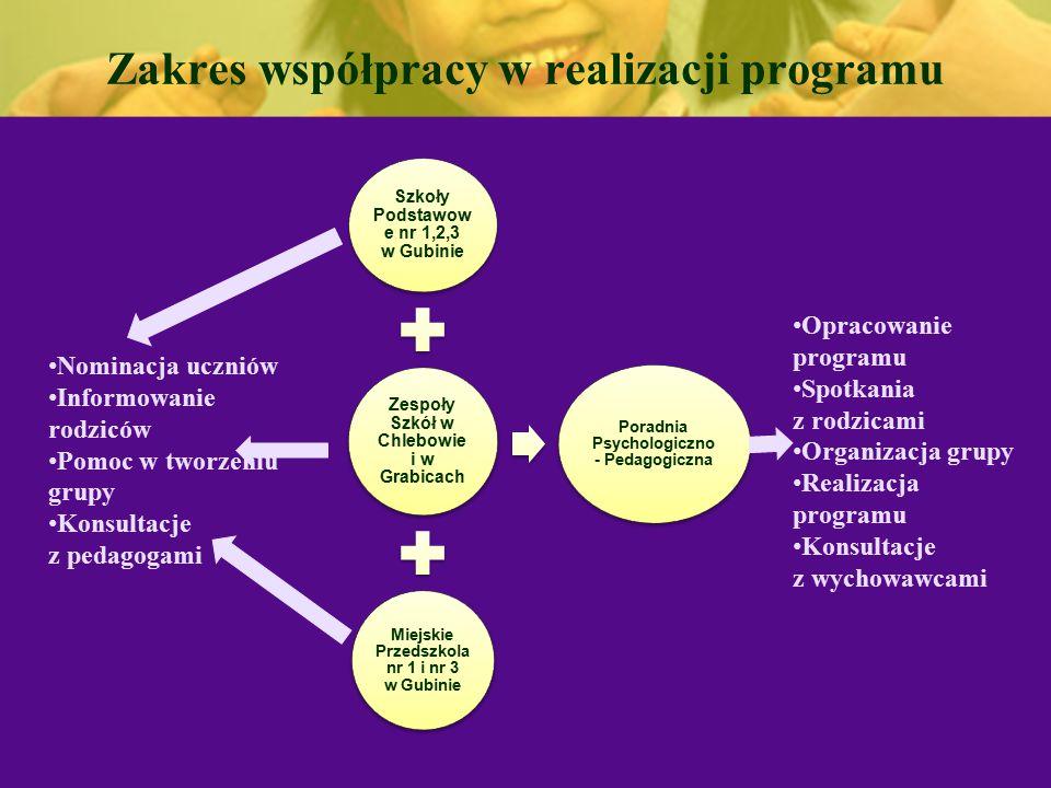 Zakres współpracy w realizacji programu