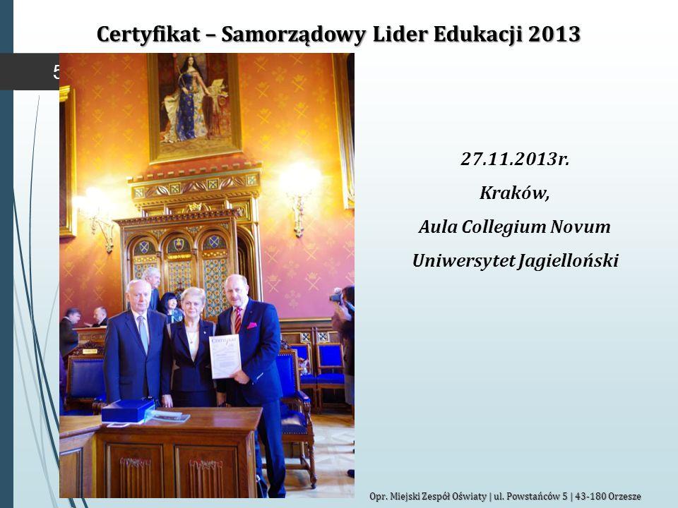 Certyfikat – Samorządowy Lider Edukacji 2013