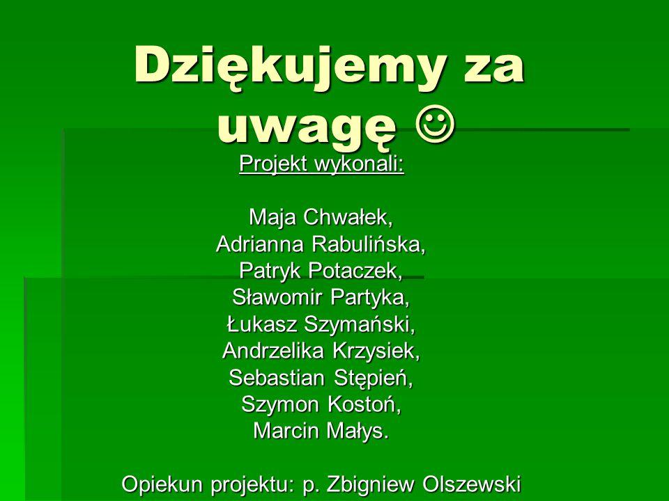 Opiekun projektu: p. Zbigniew Olszewski