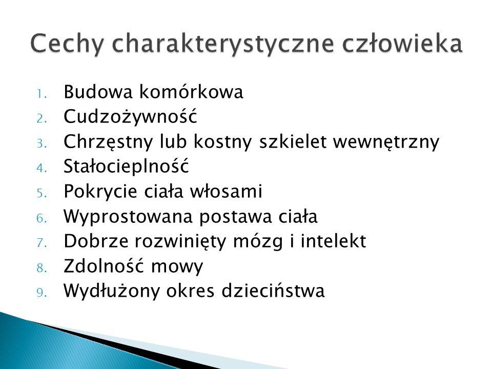 Cechy charakterystyczne człowieka