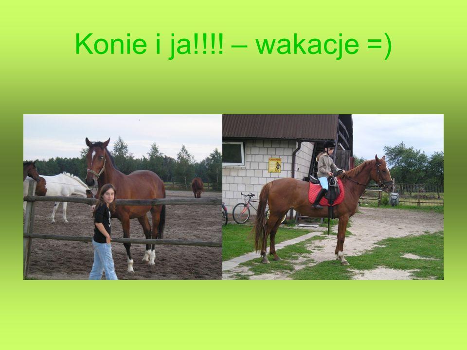 Konie i ja!!!! – wakacje =)