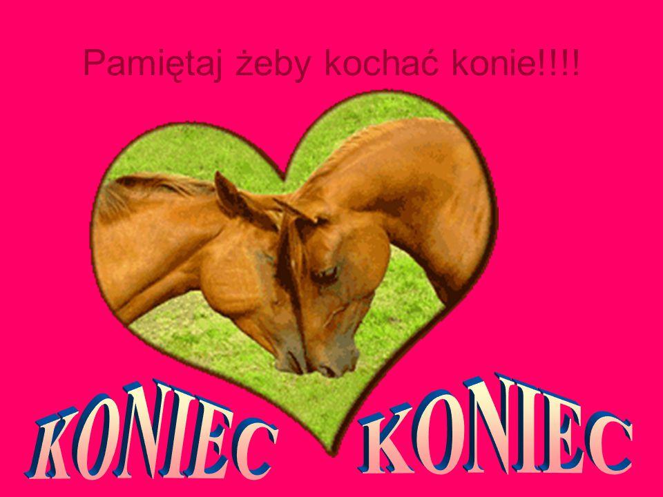 Pamiętaj żeby kochać konie!!!!